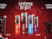 portfolio_SIsha